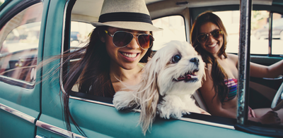 Young girls on road trip with pup
